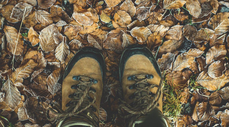shoes 1940249 1920