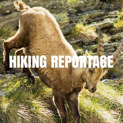 reportage_block