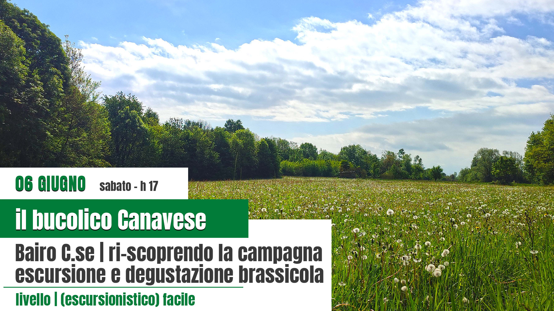 il bucolico Canavese